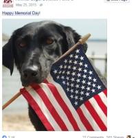 https://www.facebook.com/AnimalLegalDefenseFund/posts/10152761822416218:0